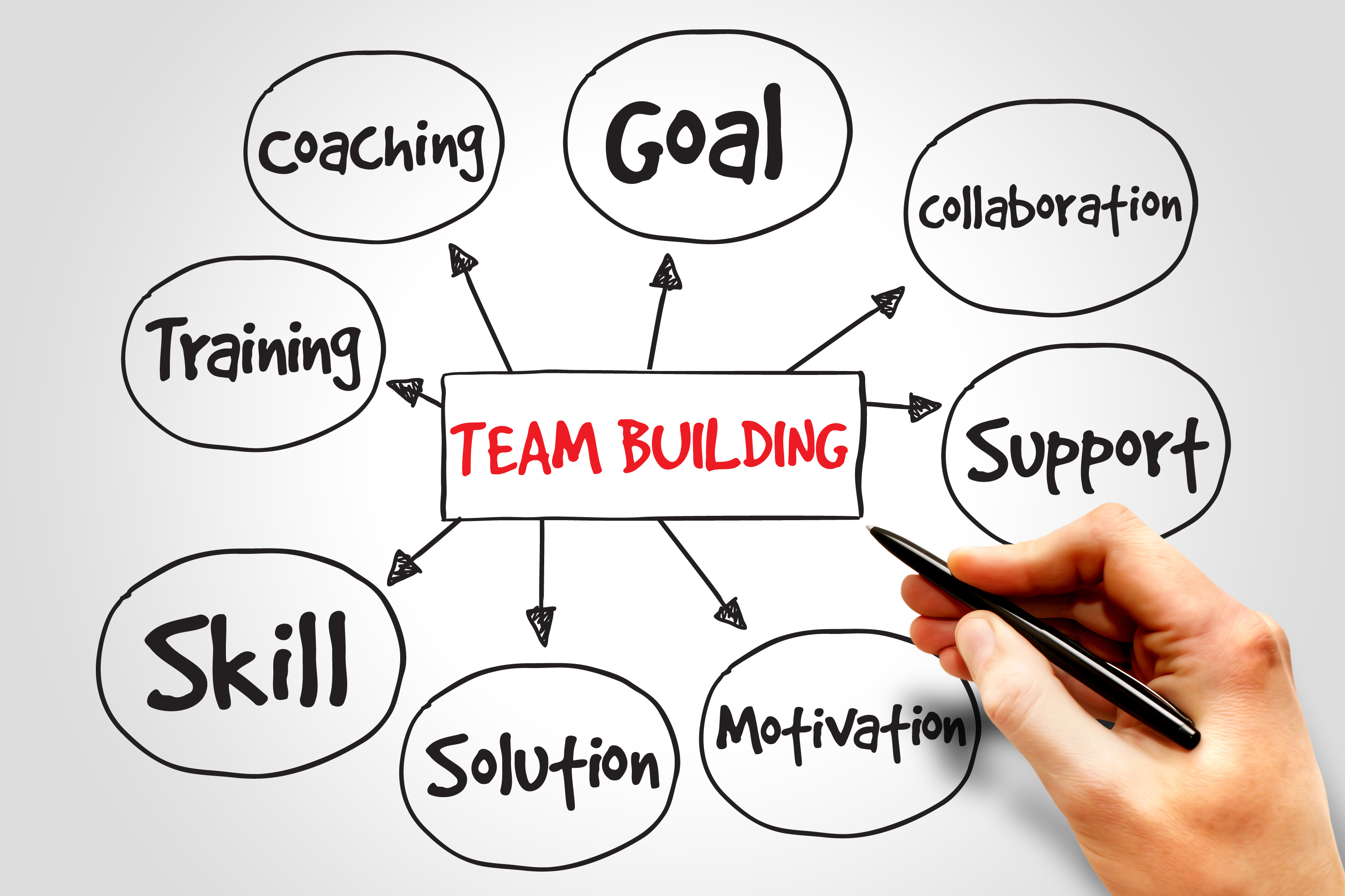 Imagini pentru team building