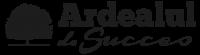 logo_Ardealul de Succes_WEB_4-1