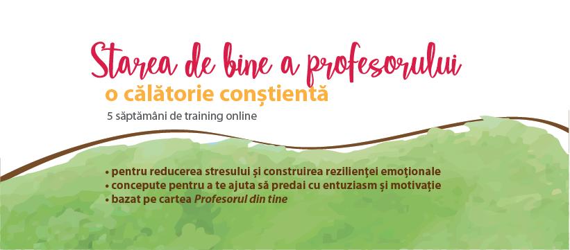 Training - Starea de bine a profesorului