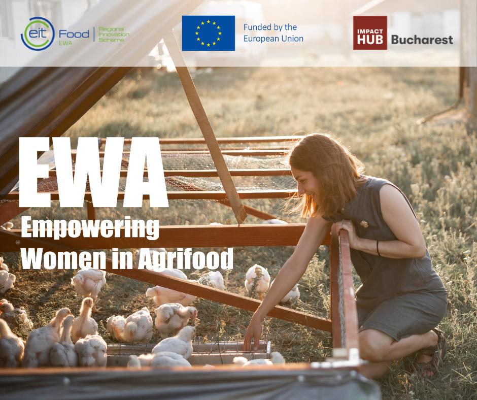 EWA - finaliste program
