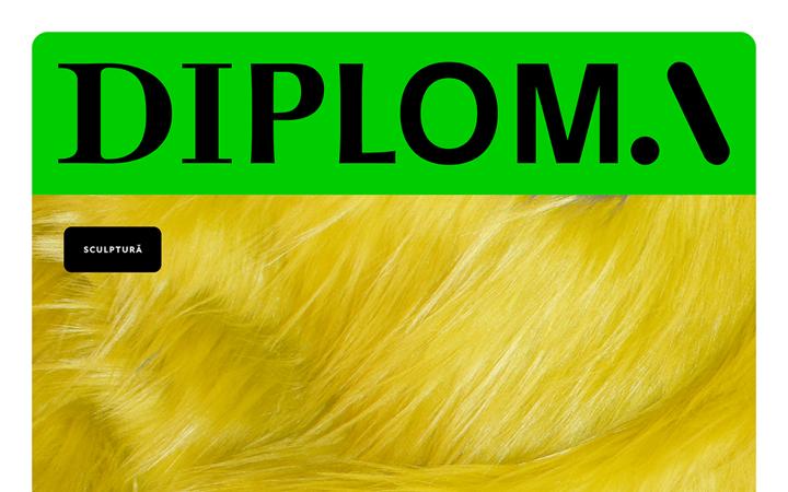 diploma copertă